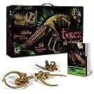 GEOWORLD ティラノサウルス・レックス組み立て骨格キット T-Rex骨格模型