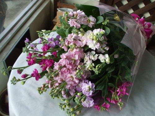 千葉県《南房総産》ストックの花束