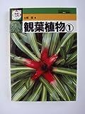 観葉植物〈1〉 (検索入門)