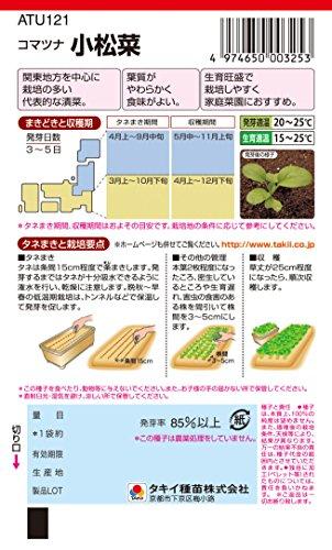タキイ種苗 こまつな 小松菜