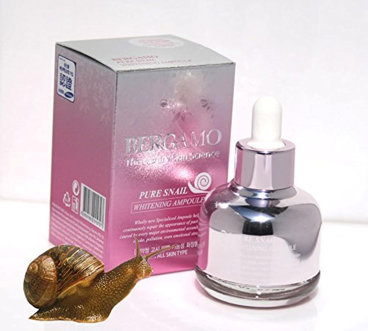 くつろぎ丈夫レーダー【ベルガモ][Bergamo] 高級スキン科学は純粋なカタツムリホワイトニングアンプル30ml / the Luxury Skin Science Pure Snail Whitening Ampoule 30ml /...