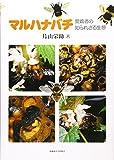 マルハナバチ―愛嬌者の知られざる生態