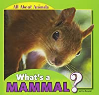 What's a Mammal? (All About Animals)