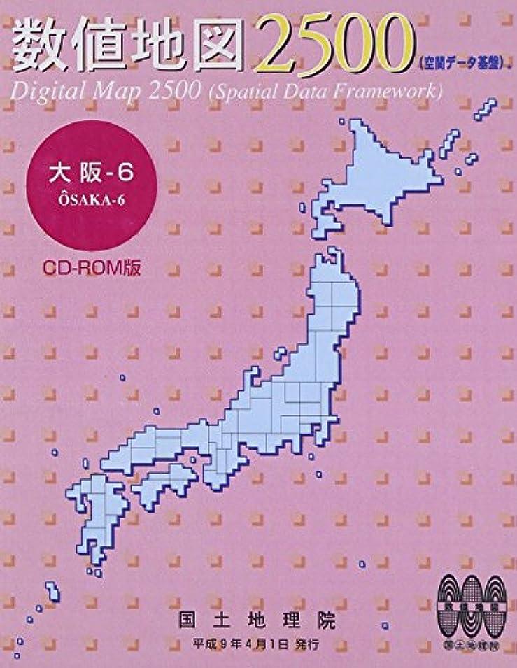 傑出した殺人者現金数値地図 2500 (空間データ基盤) 大阪-6