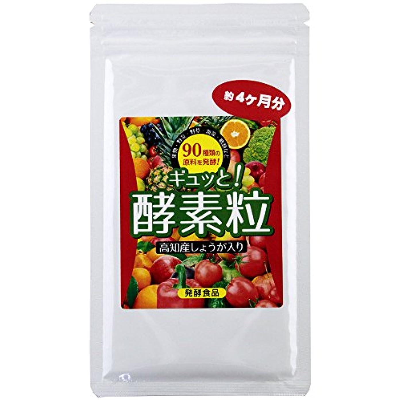 野草発酵 ギュッと酵素粒 90種類の野草発酵エキス (約120日分 (440mg×120粒))