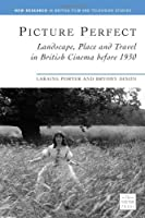 Picture Perfect: Landscape, Place And Travel in British Cinema Before 1930 (New Research in British Film and Television Studies)