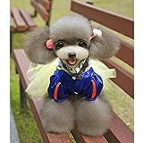 【ノーブランド品】ペット 犬 白雪姫 ディズニー ハロウィーン ドレス 衣装 プリンセス服  L
