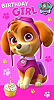 Paw Patrol Birthday Girl Birthday Card