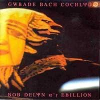 Gwbade Bach Cochlyd