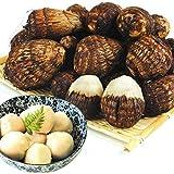 国華園 九州産 小玉 白芽 大吉 2kg1箱 里芋 野菜