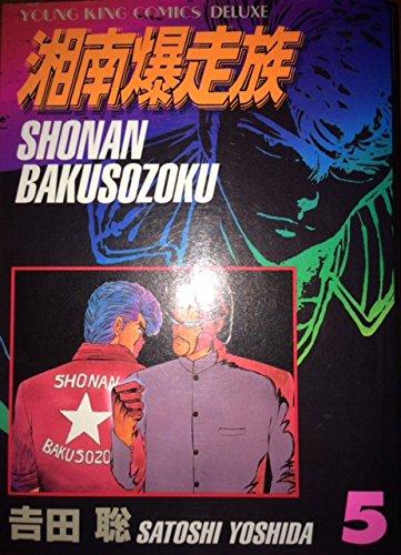 湘南爆走族 (5) (コミック―YKコミックス・デラックス (493))の詳細を見る