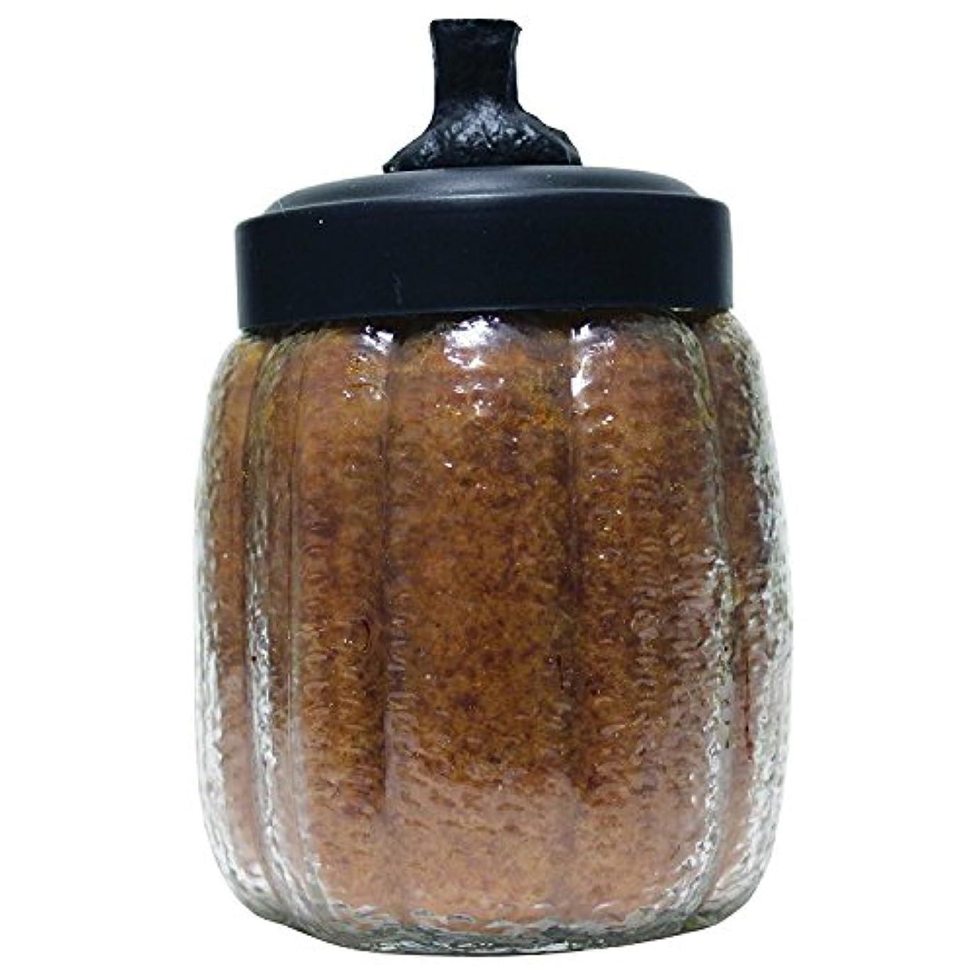 不変迷彩外国人A Cheerful Giver Papa's Pumpkin Pie Pumpkin Jar Candle, 15-Ounce by Cheerful Giver [並行輸入品]