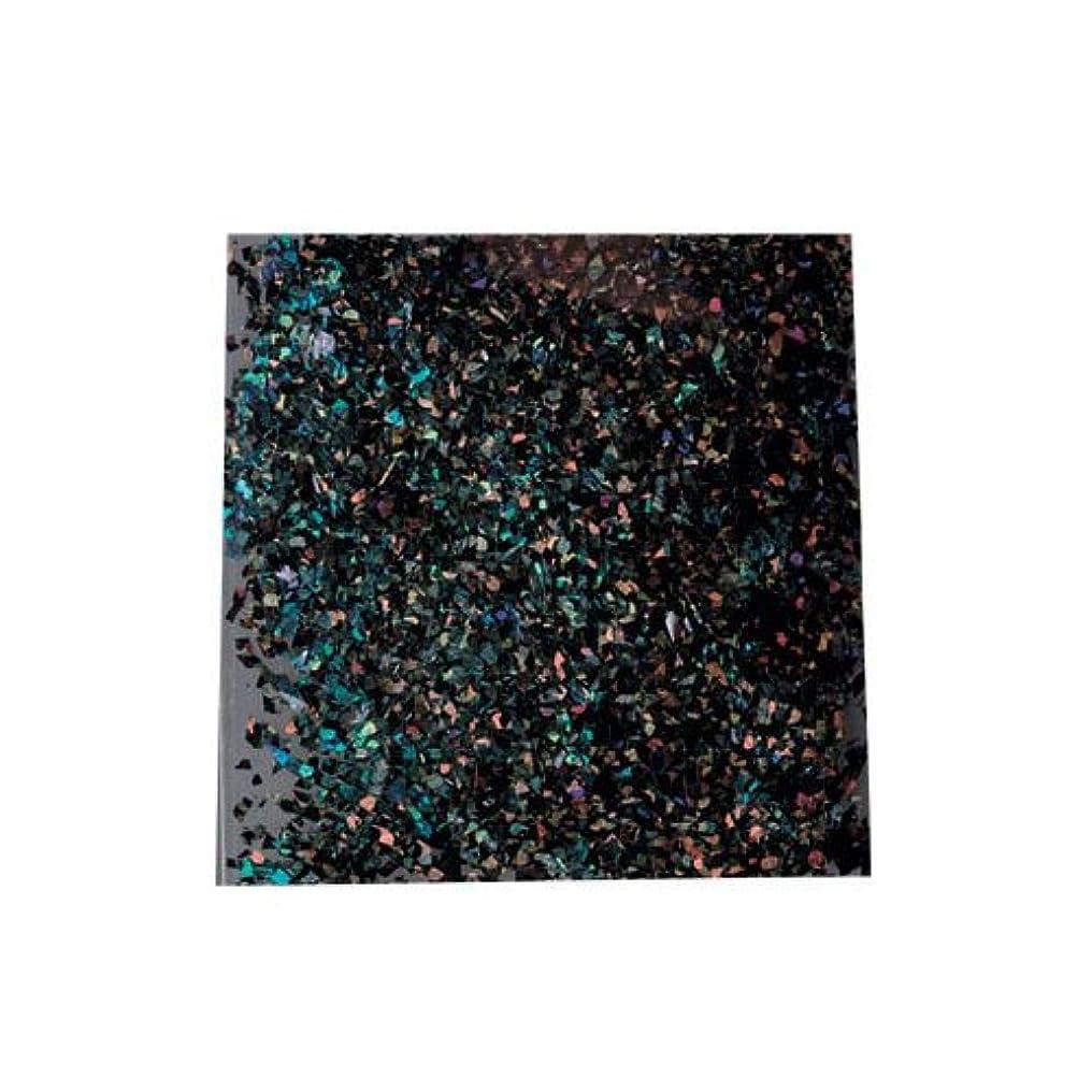 タクトアルコール服を洗うピカエース 乱切ホロ #897 ブラック 0.5g アート材