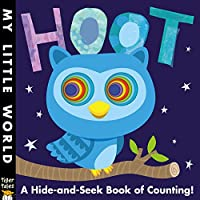 Hoot: A hole-some book of counting (My Little World)