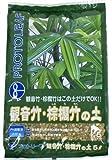 プロトリーフ 観音竹・棕櫚竹の土 5L