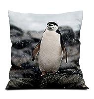 正方形装飾抱き枕 柔らかい枕 ルームソファ車の装飾枕(ペンギンは雪を降らせる 40x40cm)