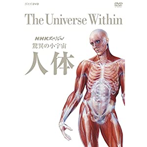 NHKスペシャル 驚異の小宇宙 人体 DVD BOX (新価格)