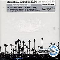 The Article 3 by Me'Shell Ndegeocello (2006-11-28)