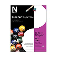 Neenahプレミアムカードストック、96明るさ、65kg、手紙、明るいホワイト、250シート1パック(91904) 250シート(2- Pack)