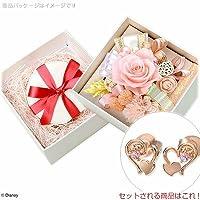 [オハナソムリエ]お花ソムリエ 特別ギフトセット PF-0059-VPRDSW0017