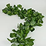 Rurality Fake Green Vines with Leaves for Room Decor Wall Hanging Plant Ivy Garland ,Pack of 2 (Pothos)