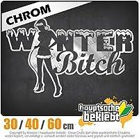 KIWISTAR - Winter Bitch Design 1 15色 - ネオン+クロム! ステッカービニールオートバイ