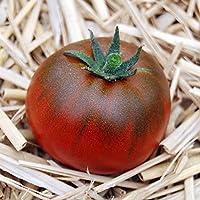 【SEED】Heirloom Tomato® Black Altai エアルーム・トマト・ブラック・アルタイ (10 seeds)*2015新品種