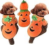 ハロウィン 犬用 かぼちゃ ペット コスプレ 仮装 HALLOWEEN キッズ かわいい 衣装 (M)