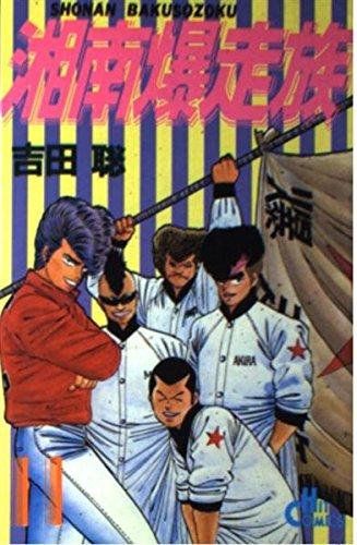 湘南爆走族 11 (ヒットコミックス)の詳細を見る