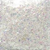 ピカエース ネイル用パウダー ピカエース 乱切オーロラ #710 ホワイト 1g アート材