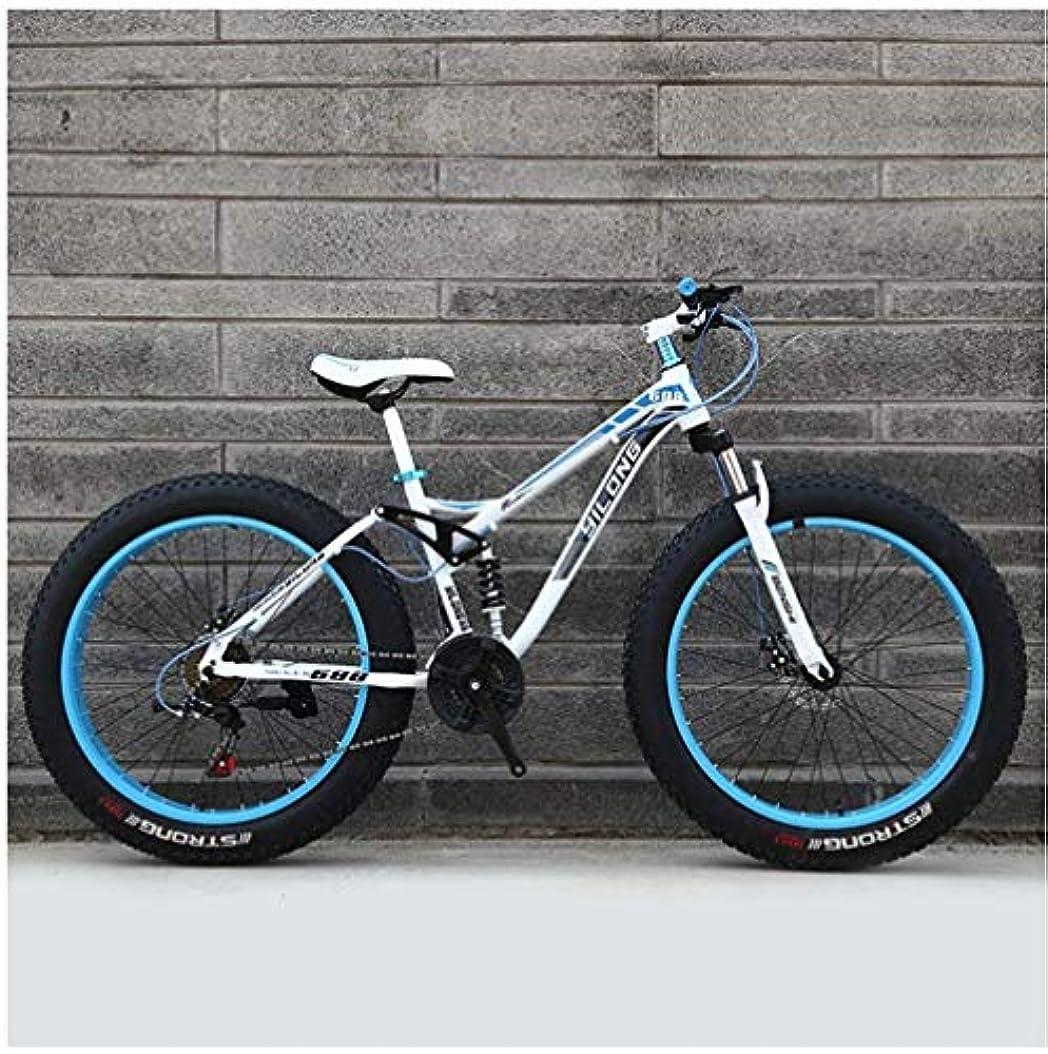 肺炎ダイバーあごひげDFEIL 可変速マウンテンバイク、高炭素鋼フレーム、デュアルディスクブレーキハードテイル24/26インチ全地形クロスカントリーマウンテン自転車滑り止めのバイク (Color : 24 speed, サイズ : 24 inches)