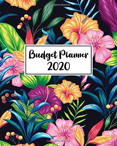 Budget Planner 2020: Create a Monthly Financial Plan With This Budgeting Organizer - Track Daily and Monthly Bills and Expenses