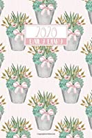 2020 Daily Diary: Full Day on a Page to View DO1P A5 Writing Journal | Pink & Green Succulents Plant Pot Pattern (2020 Daily Diaries)