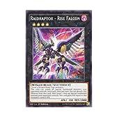 遊戯王 英語版 SP15-EN037 Raidraptor - Rise Falcon RR-ライズ・ファルコン (シャターホイルレア) 1st Edition