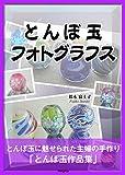 とんぼ玉フォトグラフス: とんぼ玉に魅せられた主婦の手作り「とんぼ玉作品集」~50点を超えるとんぼ玉写真とともにお楽しみください。