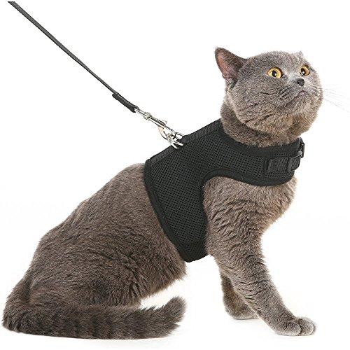 PUPTECK ハーネス 猫用 犬 ハーネス 小型犬 ハーネス リード セット 犬用 リード 胸あて式 通気性良いメッシュ素材 散歩 ブラック M