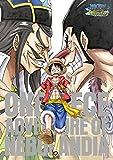 ワンピース~アドベンチャー オブ ネブランディア~(通常盤DVD)[DVD]