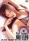 夏川純 Pure Summer [DVD]