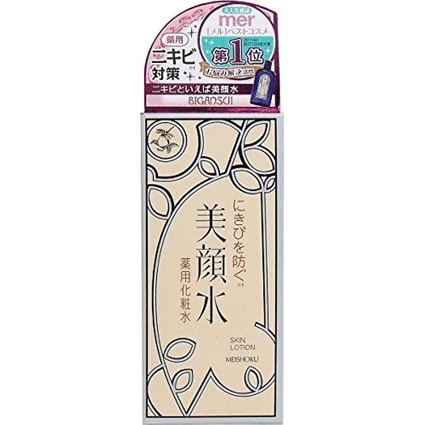 メンバー雰囲気インゲン明色美顔水 薬用化粧水R 90ml