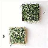 壁掛け 観葉植物 消臭 CT触媒付フェイクグリーンのフレーム L2タイプ [kkm1175] (A)