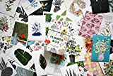 Flower Box: 100 Postcards by 10 artists (100 botanical artworks by 10 artists in a keepsake box) 画像