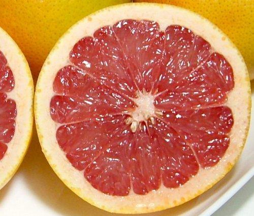 南アフリカ産 グレープフルーツ 赤肉 12個入り