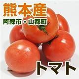 あいあい 熊本県産 トマト (熊本阿蘇市・山都町産) 400g 【野菜セット同梱で】【九州 野菜】【とまと】【フルーツトマト】