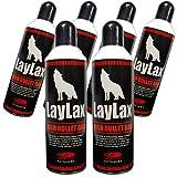 LAYLAX ハイバレットガス HFC152aガス 460ml×6缶(2,760ml)セット