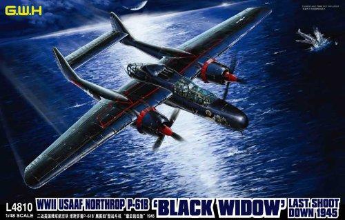 1/48 WWII 米陸軍 P-61B ブラックウィドウ 「ラストショットダウン1945」 (L4810)