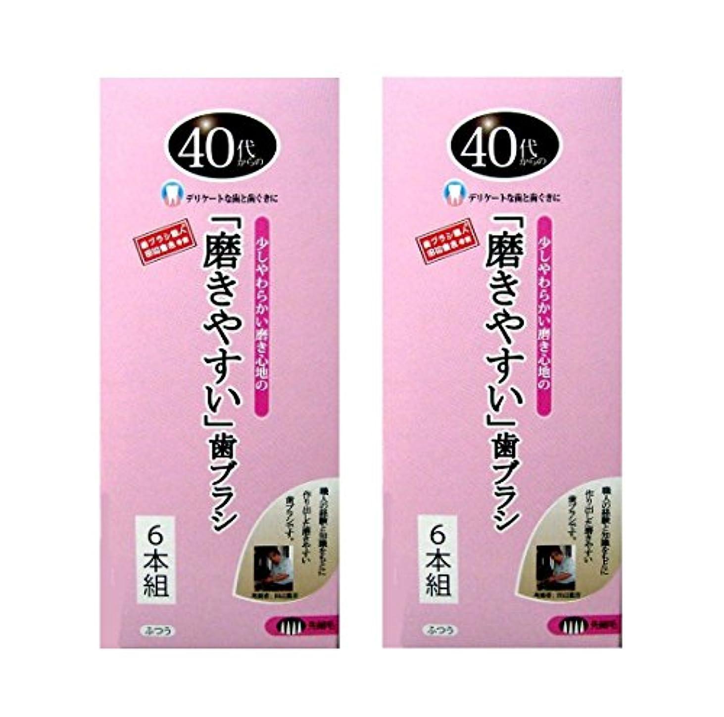 疑問を超えてその結果振り向く歯ブラシ職人 田辺重吉考案 40代からの磨きやすい歯ブラシ 先細 6本組×2個セット