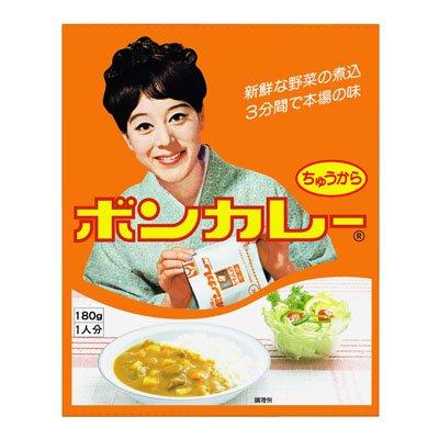 沖縄限定版ボンカレー中辛10パックセット