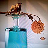 Gallipoli [輸入盤CD] (4AD0121CD)