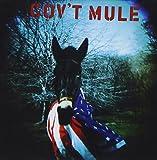 Gov't Mule 画像