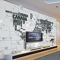 Wapel 大規模なシームレスなヨーロッパスタイルのシンプルなテレビの研究背景の壁紙 100 X 100 cm